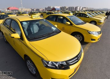 Taxi Renovation Policy Adrift