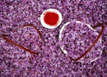 Iran Saffron Exports Earn Over $170 Million