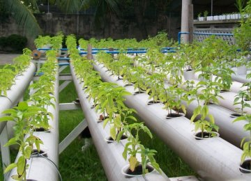 Agritech to Help Conserve Water