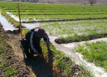 New AgriTech Projects to Help Promote More Lucrative Farming