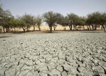 Fighting Desertification the African Way