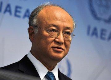 IAEA Probe Not Endless