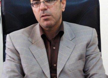 MPs Respond to Rising Saudi Hostility