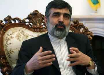 IAEA Haste Criticized