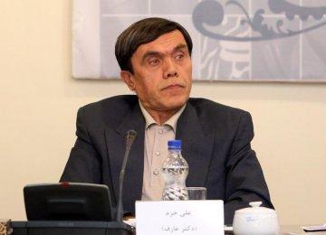 Ex-Diplomat Questions Motives of FM's Critics