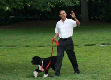 Plot to Steal Obama's Dog Foiled