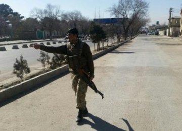 Afghan Suicide Bomb Kills 10