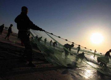Israeli Navy Arrests Gaza Fishermen