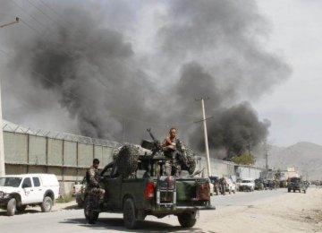 Afghan Taliban Kill 25 Pro-Gov't Forces