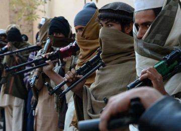 Taliban Endorse Peace Talks With Kabul