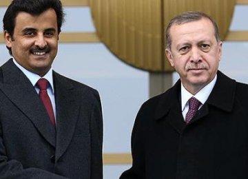 Qatar Urges Turkey to Mend Egypt Ties
