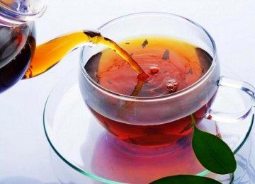 Iranian Team Surveys Indian Tea Industry