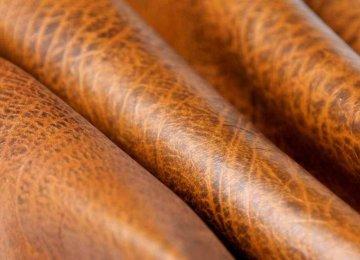 Leather Capital