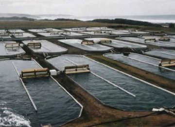 Aquaculture Project With France