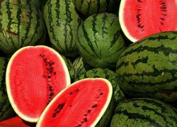 Watermelon Exporters Can Sue UAE
