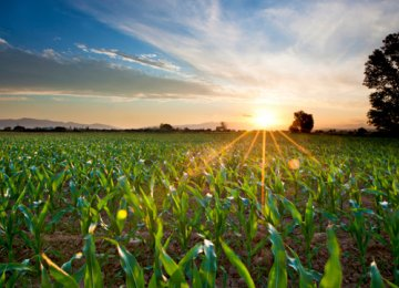 2.9% Agro Growth Predicted