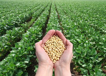 Call for More Support for Agro, Processing Industries