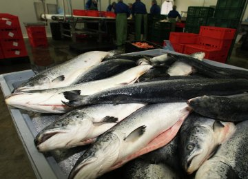 Aquatic Exports to Russia