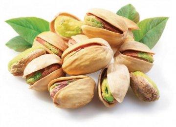Pistachio Exports Rise