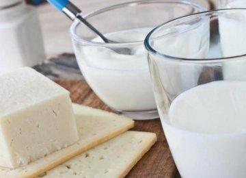 Mazandaran Agro, Dairy Exports