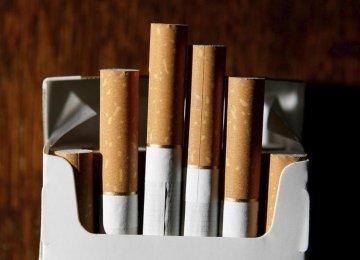 Cigarette Production
