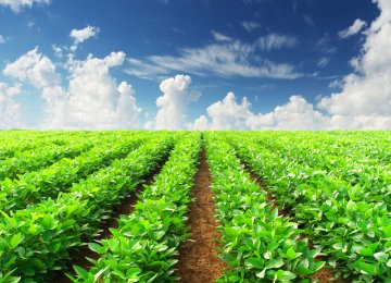 Agricultural MoU With Netherlands