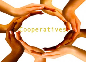 Cooperatives Exports Exceed $1b