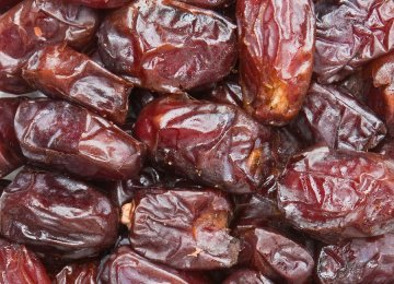 Date Exports