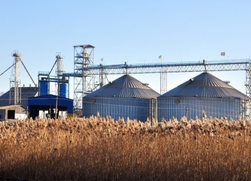 Kazakh Grain Terminal Construction Postponed