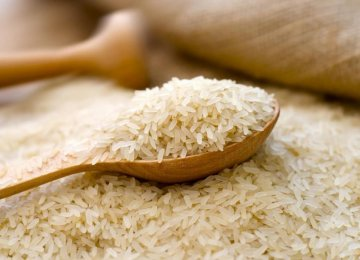 Ban on Rice Imports Not Lifted