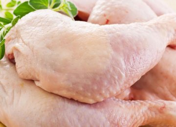 Poultry Export Credits