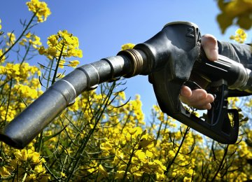 Biofuels to Be Utilized for Transport