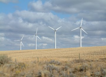 German Co. May Invest in Renewables