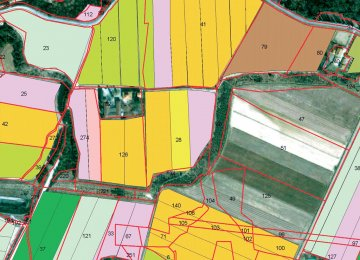 FAO to Help With Cadastral Survey