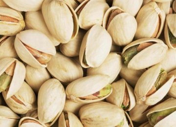 US Pistachio Growers Worry  at Iran Competition