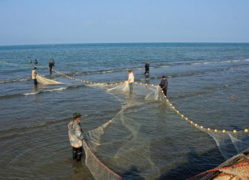 Fish Consumption Low
