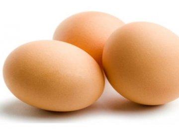 Researchers Make SPF Eggs