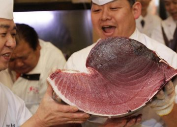 World's Most Expensive Fish Sold for $1.8m in Japan