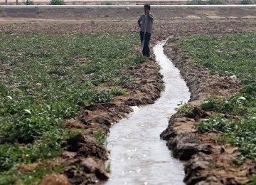 Waste Water Irrigation  a Concern