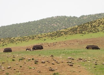 Tour the Real Life of Qashqai Nomads