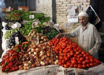 Egypt's Best Economic Year
