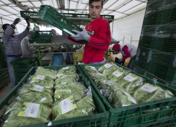 EU Aids Farmers  Hit by Russia Food Ban