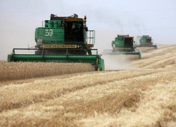 Russia Grain Export Duty
