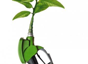 Iranian Researchers Develop Biofuel