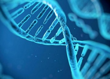 Amazon, Google Vie Over Human DNA Data Storage