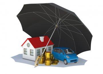 Insurance Sector Survives Despite External Pressure