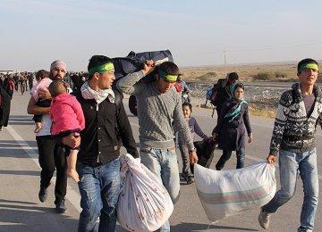 Border Amenities for Arba'een