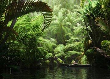 Earth Has 3t Trees, 422 per Person