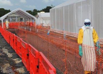 Health Experts Castigate WHO Over Ebola