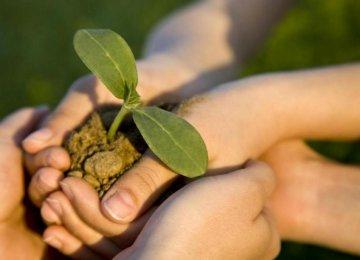 Environment Education for Teachers
